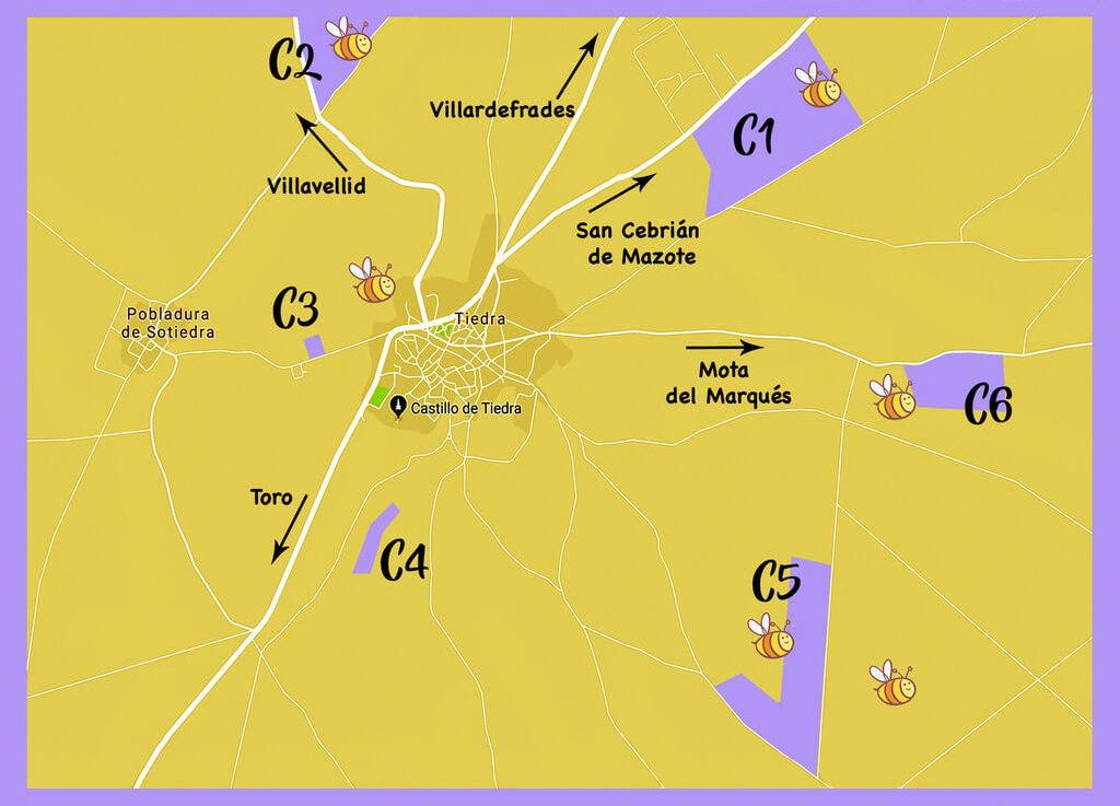 Localización exacta de los campos de lavanda. Fuente: Oficina de turismo de Tiedra