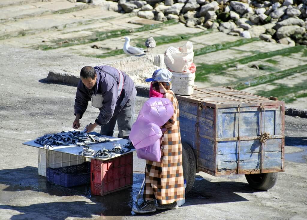 Vendedores de pescado en el puerto de Essaouira