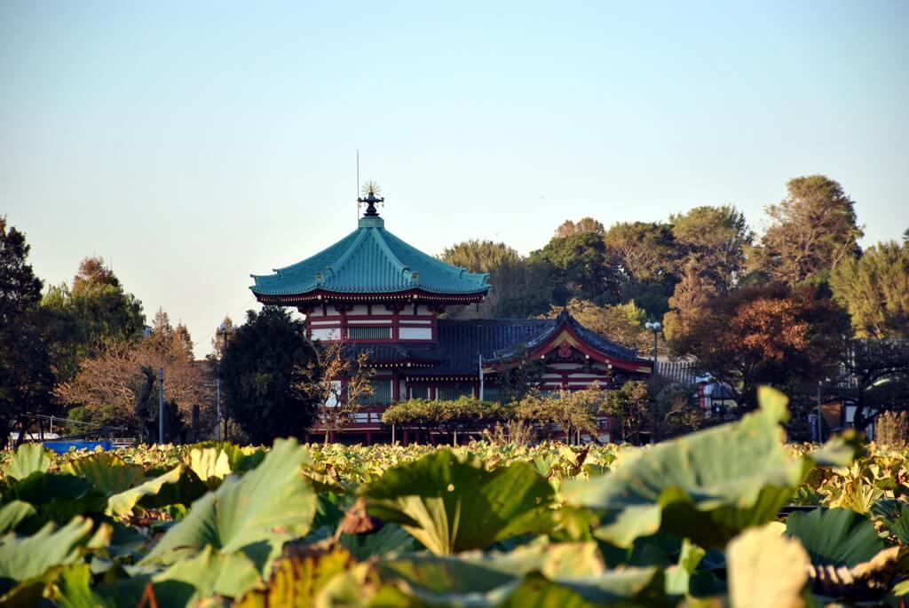 Estanque Shinobazu con el Templo Bentendo al fondo
