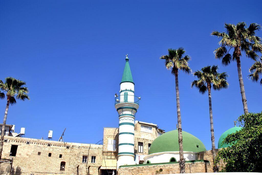 Mezquita El-Zeituna