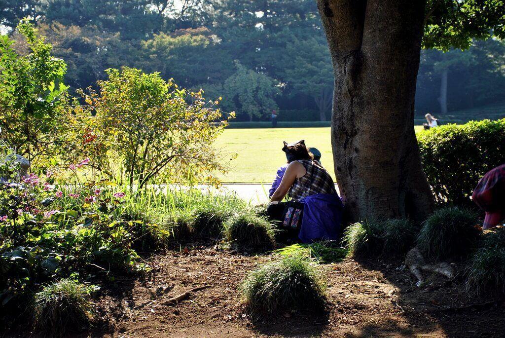 Jardines orientales de Tokio