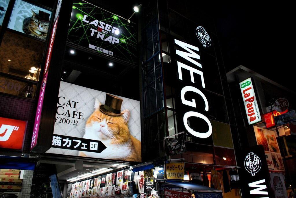 Cat Café en Takeshita Dori
