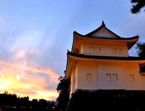 Qué ver en la zona centro de Kioto