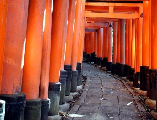 Visita al santuario Fushimi Inari Taisha