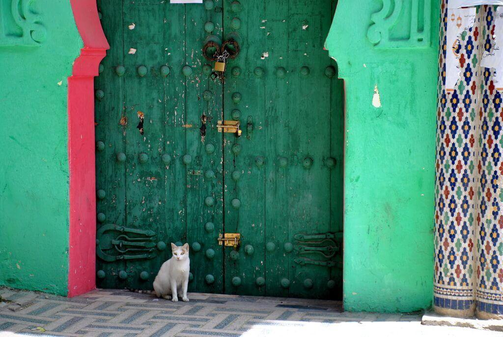 Qué ver en Fez. La esencia de Marruecos