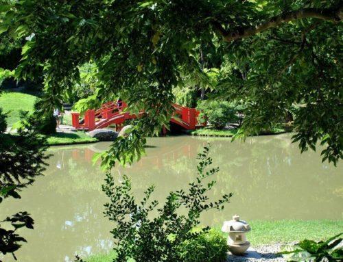 El jardín japonés de Toulouse