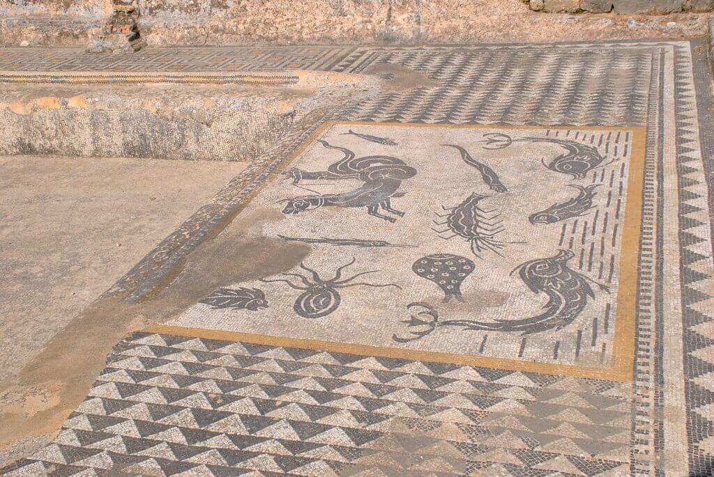 Mosaico perfectamente conservado en una casa de Volubilis