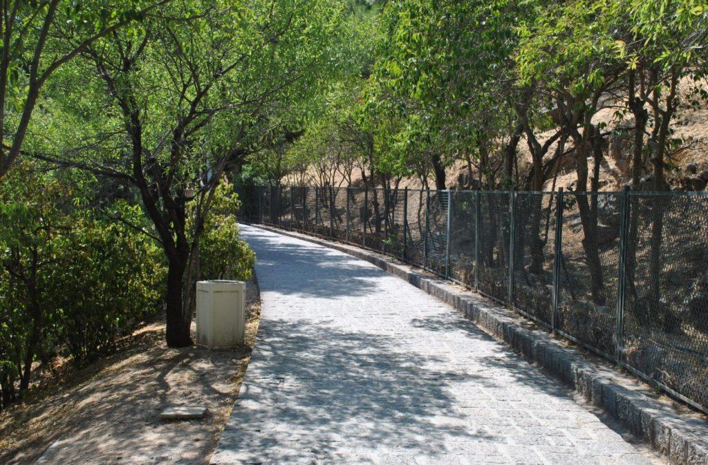 Camino que conduce al Museo de Delfos