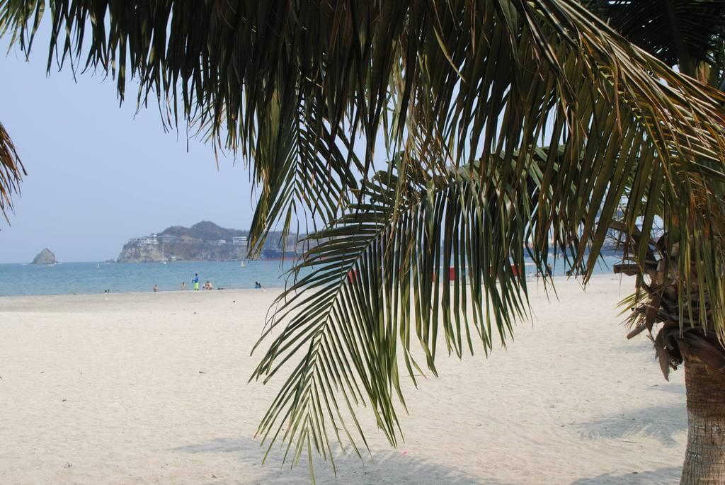 Playa del Paseo Bastidas