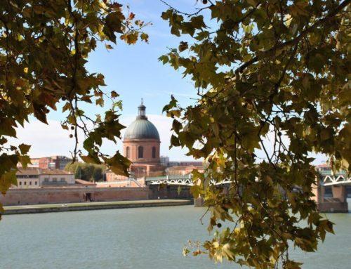 Dónde alojarse en Toulouse