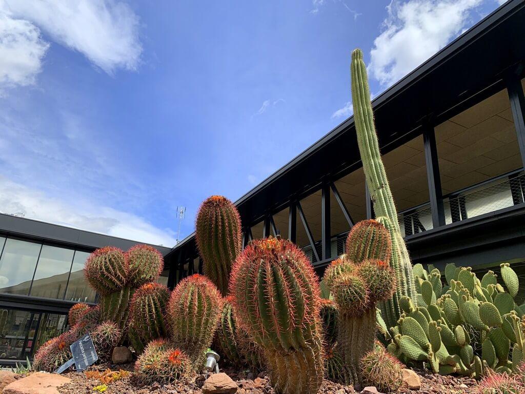 qué ver en Desert City