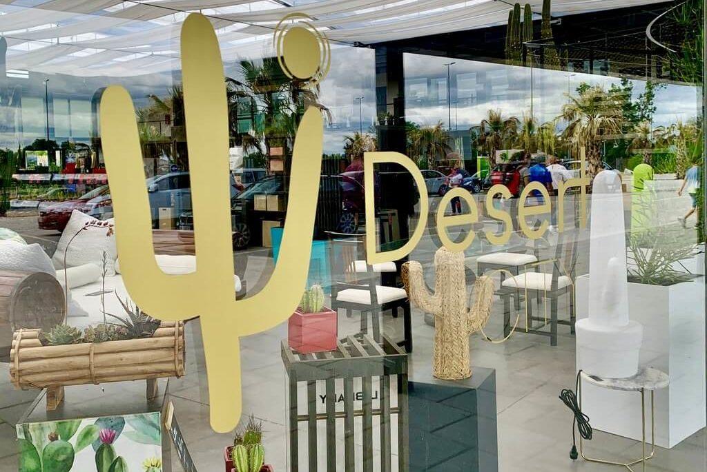 Desert City, el vivero de cactus de Madrid