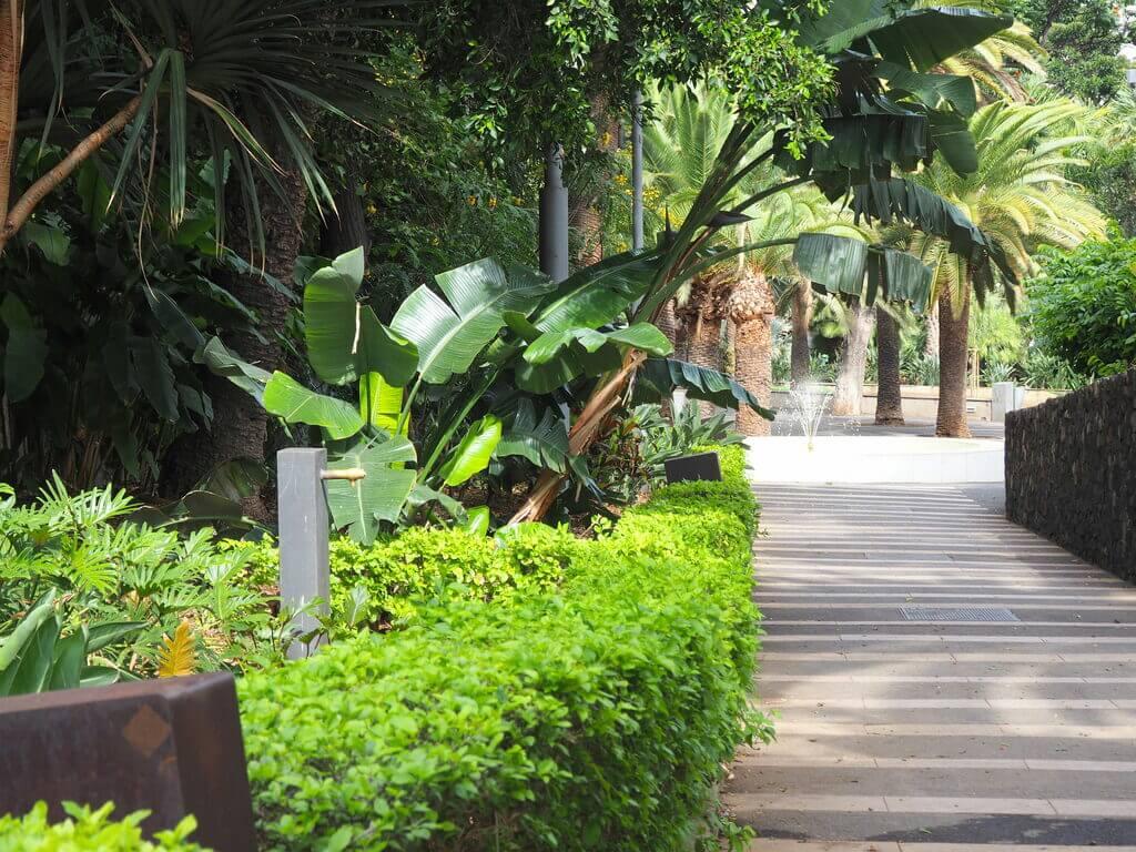 Caminando por el Parque García Sanabria
