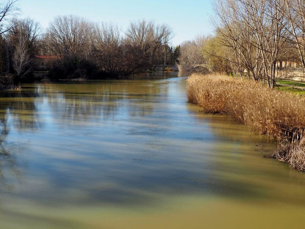 El río Carrión a su paso por Palencia