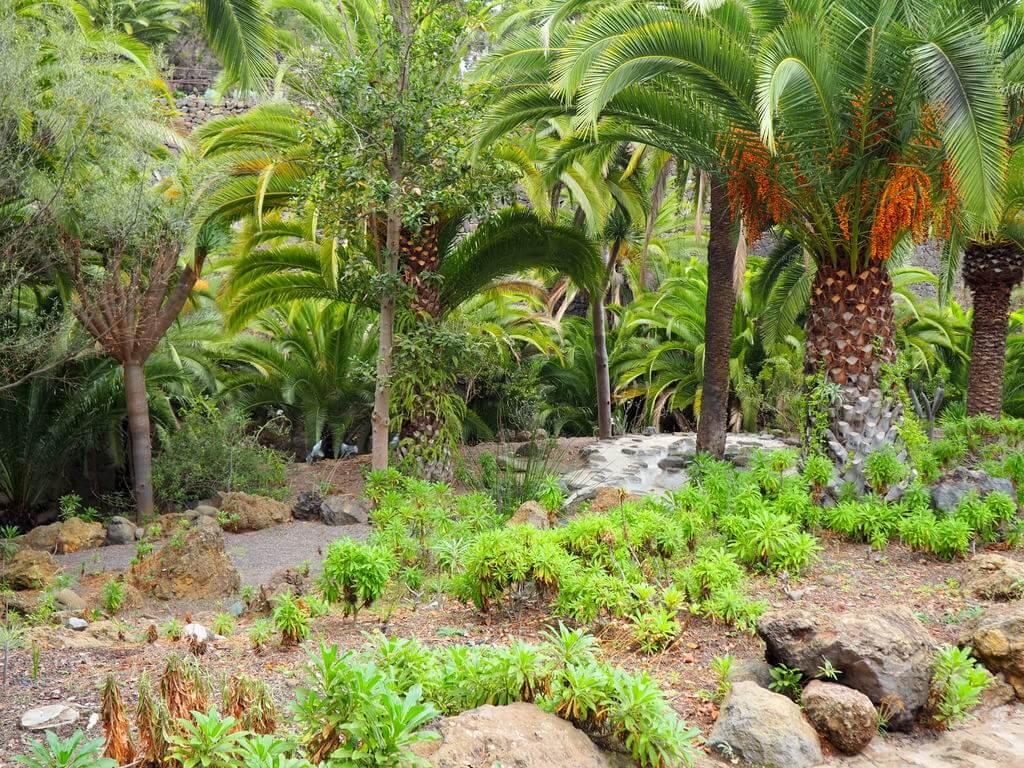Uno de los jardines del Parque del Drago