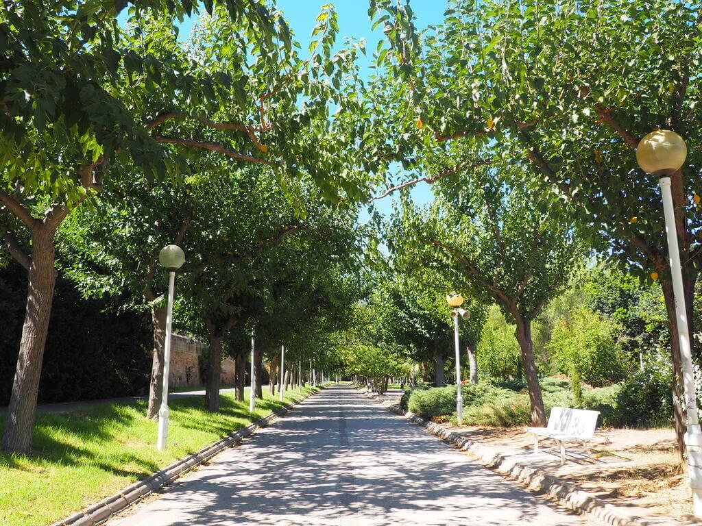 Caminando por el Jardín del Turia