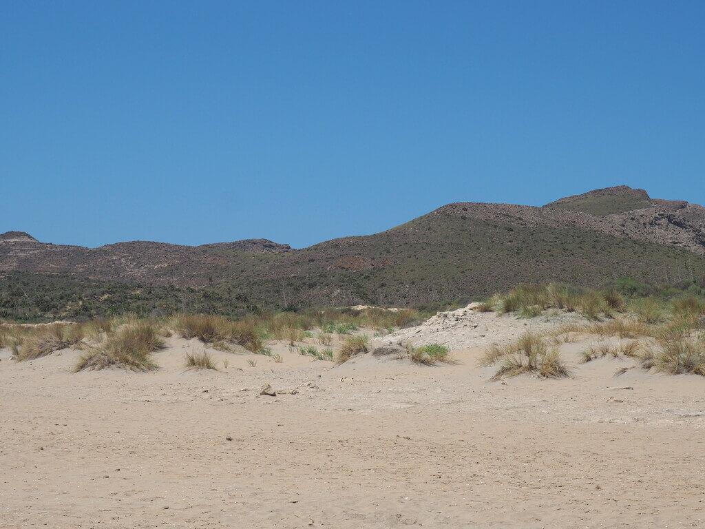 Dunas en la Playa de los Genoveses