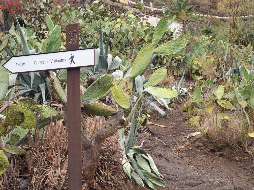 masca el pueblo más bonito de Tenerife