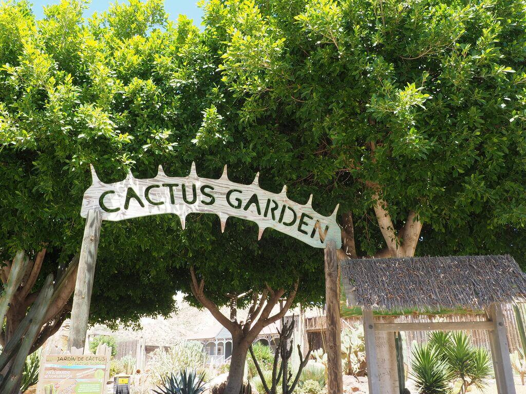Entrada al Jardín de cactus