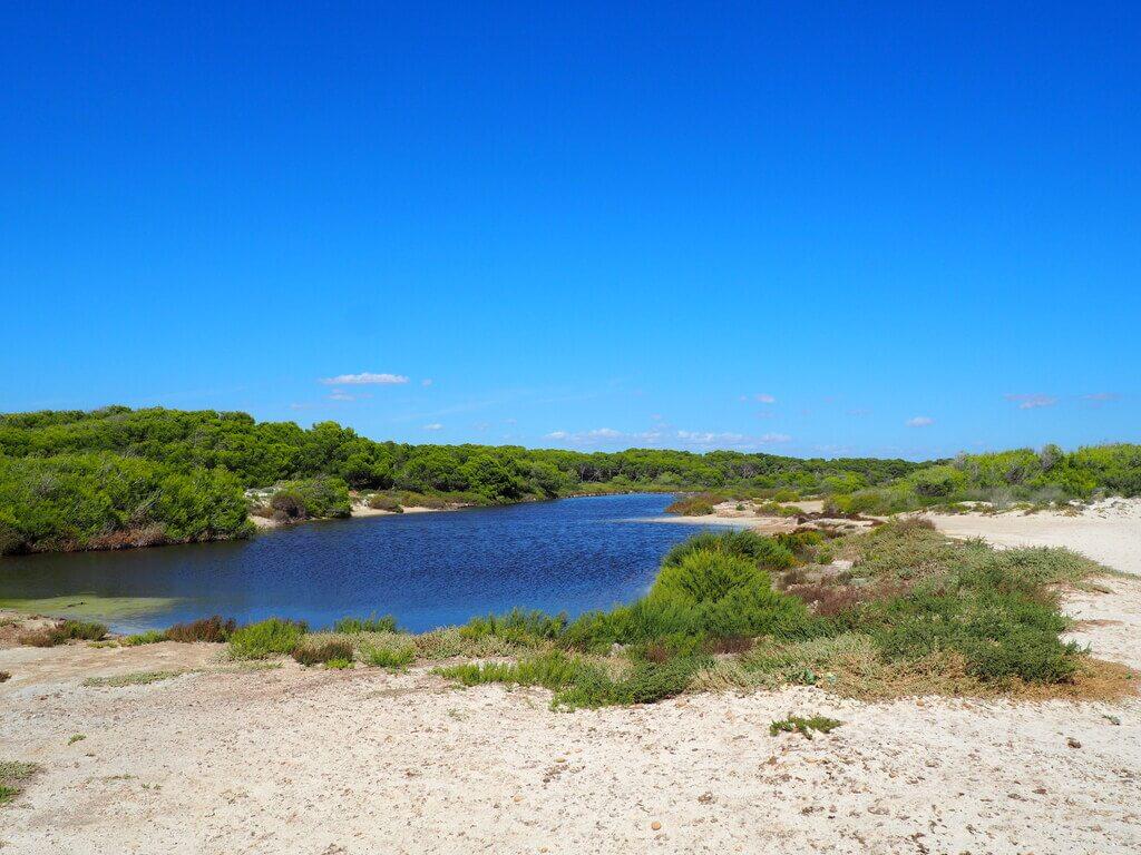 Salinas junto a la playa