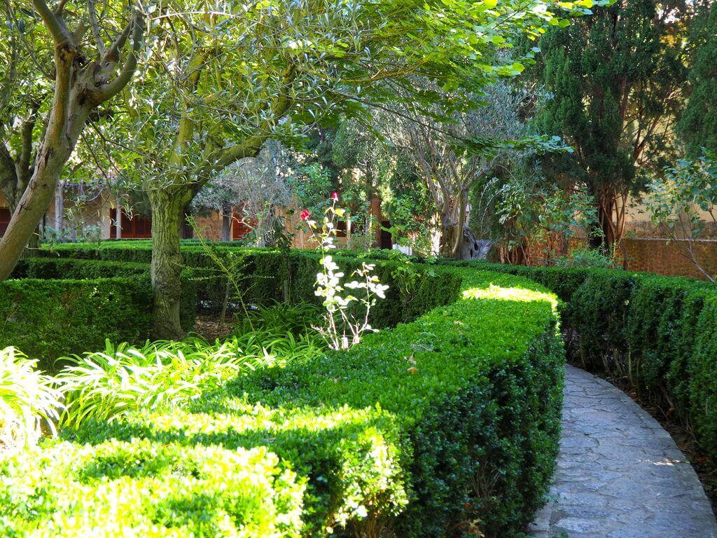 Jardines del Rey Juan Carlos